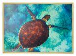 Wildlife Poster van Schildpad met Houten Fotolijst